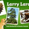 Larry Larch, Larch Trees, Books about Trees, Hello Trees, Tree Books for children, Kate Bretherton