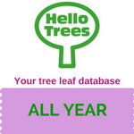 Your tree-leaf database