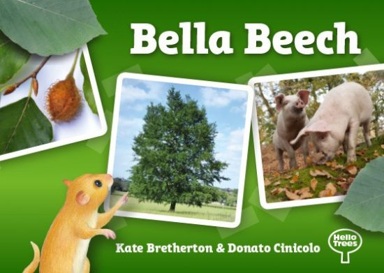 Hello Trees, Beech Trees, Tree books for children, Kate Bretherton