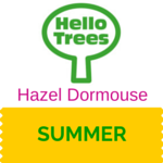 Hazel Dormouse Resource Sheet