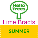 Lime Bracts Resource Sheet