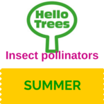 Insect pollinators: the role of trees