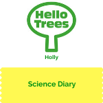 KS1 Plant Science: holly