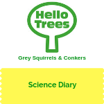KS1 Animal Science: squirrels